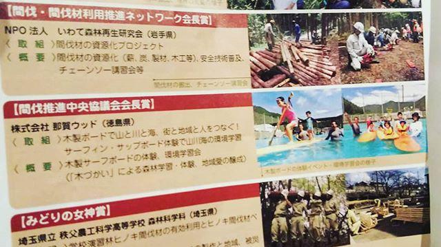 RINYA(林野庁の広報紙)に那賀ウッドの活動を掲載頂きました!