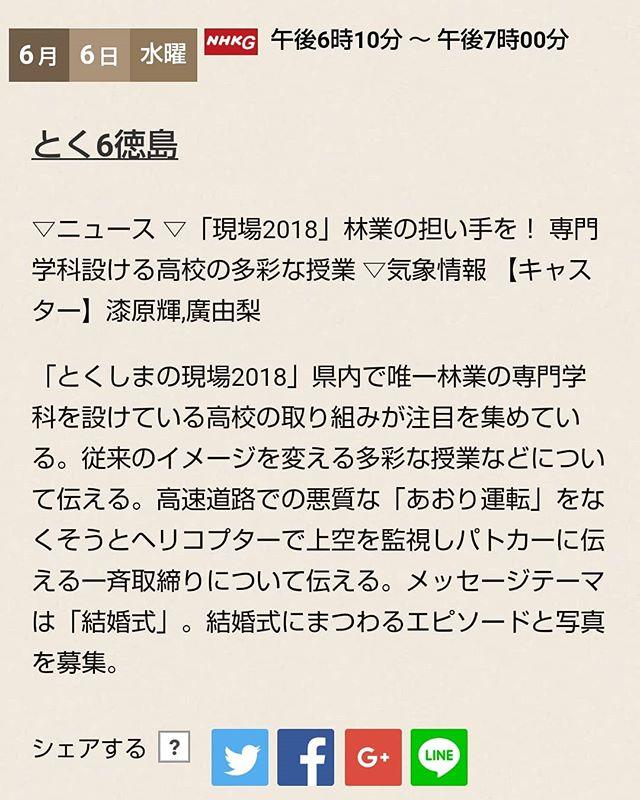 【那賀高校森林クリエイト科】2018/6/6 NHKのとく6徳島に登場!